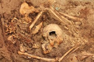new-untouched-royal-tomb-peru-skeleton_68846_600x450
