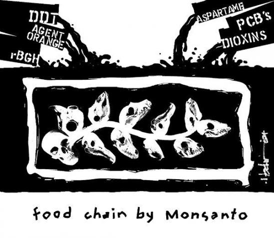 food-chain-by-monsanto1370435871